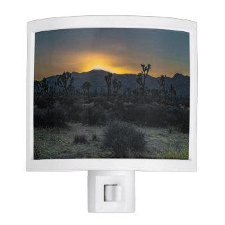 Sunrise Joshua Tree National Park Nite Lights