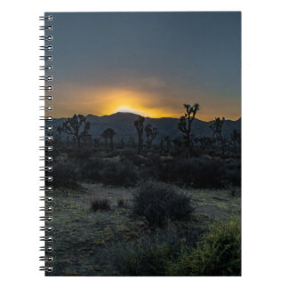 Sunrise Joshua Tree National Park Notebooks