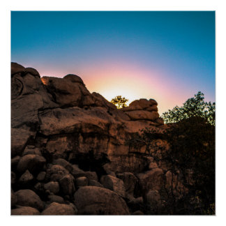 Sunrise Joshua Tree National Park Poster