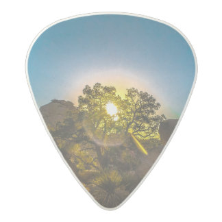 Sunrise Joshua TreeNational Park Acetal Guitar Pick