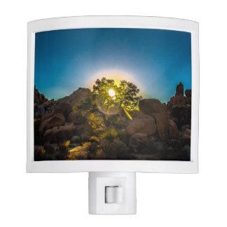 Sunrise Joshua TreeNational Park Nite Lights
