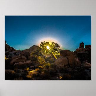 Sunrise Joshua TreeNational Park Poster