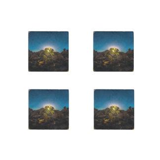 Sunrise Joshua TreeNational Park Stone Magnets