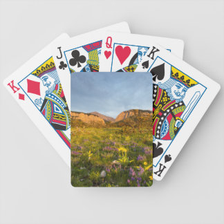 Sunrise Lights Blackleaf Canyon Bicycle Playing Cards