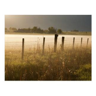 Sunrise lights fog along fence near Charlo Postcard