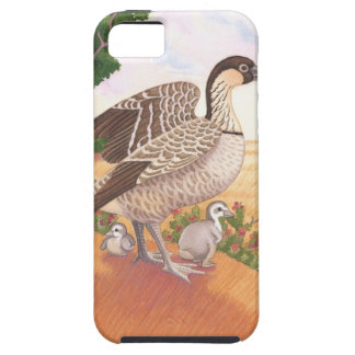 Sunrise Nene (Hawaiian Goose) iPhone 5 Covers