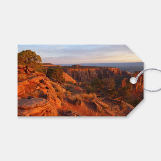 Sunrise on the Grand View Trail at CO Monument Gift Tags