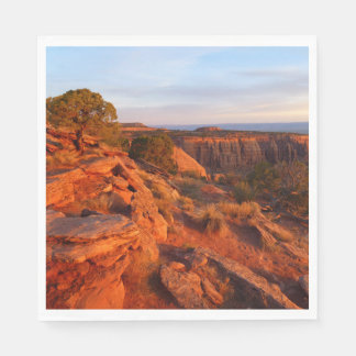 Sunrise on the Grand View Trail at CO Monument Paper Napkin