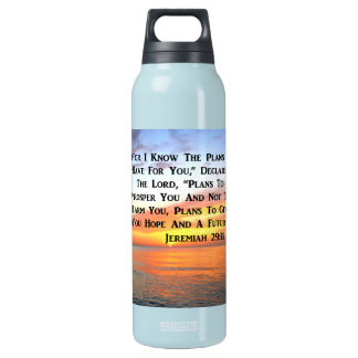 SUNRISE ON THE OCEAN PHILIPPIANS 4:13 SCRIPTURE INSULATED WATER BOTTLE
