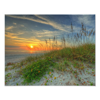 Sunrise Over Sand Dunes in Daytona Beach, FL Photo Art