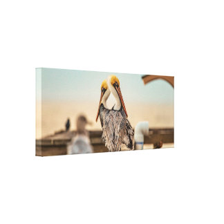 Sunrise Pelicans Canvas Print