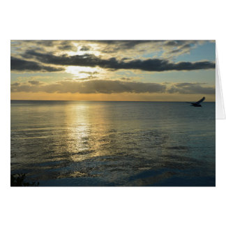 Sunrise RK Volendam Card