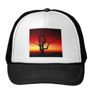 Sunrise Shenandoah Hats