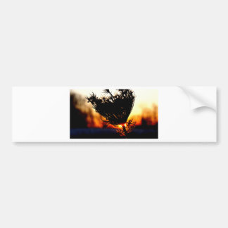 Sunrise Special Bumper Sticker