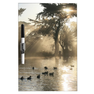 Sunrise Swimming At The Duck Pond Dry Erase White Board