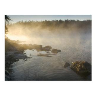 Sunrise through fog in Anderson Bay, Rainy Postcard