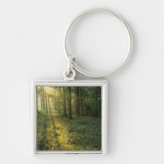 Sunrise through oak and hickory forest, Mammoth Silver-Colored Square Keychain