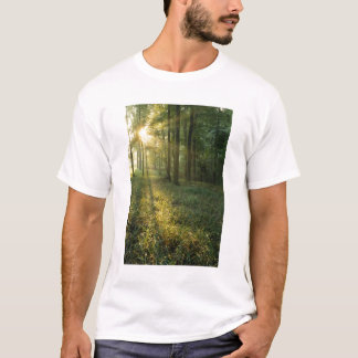 Sunrise through oak and hickory forest, Mammoth T-Shirt