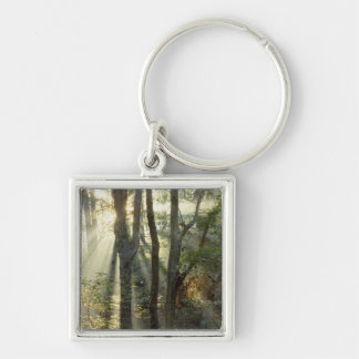 Sunrise through oak and hickory forest, Silver-Colored square keychain