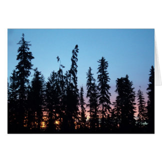Sunrise through trees card