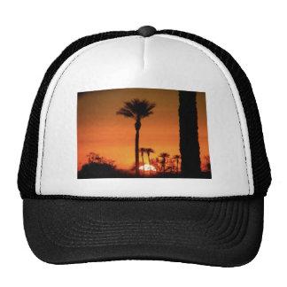 Sunrise Tree Trucker Hat