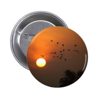Sunrise with flocks of flying cranes 2 inch round button
