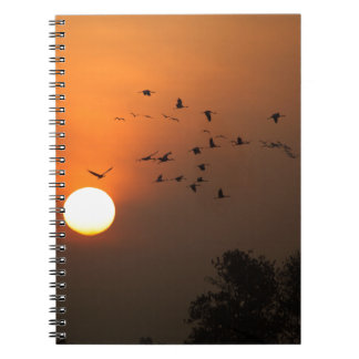 Sunrise with flocks of flying cranes notebook