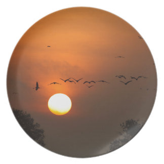 Sunrise with flocks of flying cranes plate