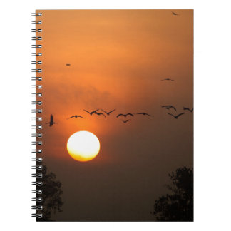 Sunrise with flocks of flying cranes spiral notebook