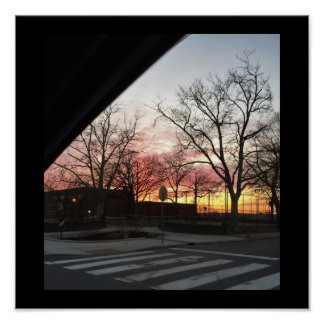 Sunrise with Trees Poster
