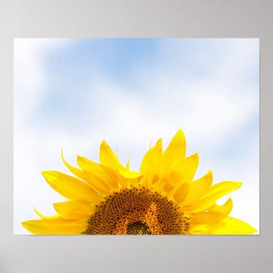 Sun's Up Sunflower Poster