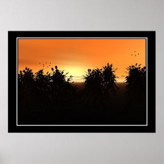 Sunset 2010 Print