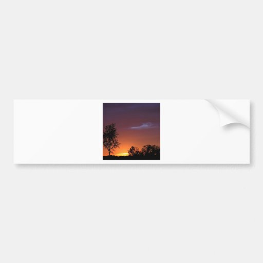 Sunset African Delight Bumper Stickers