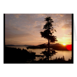 Sunset and Cedar trees Card