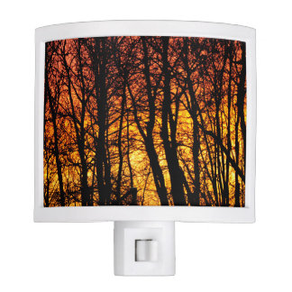 Sunset and Trees Night Light