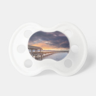 Sunset at Boulevard Park in Bellingham Washington Pacifier