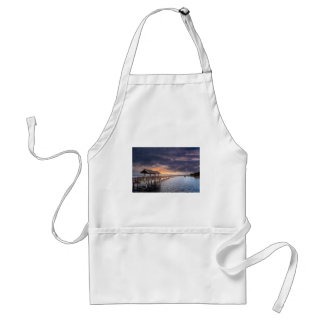 Sunset at Boulevard Park in Bellingham Washington Standard Apron