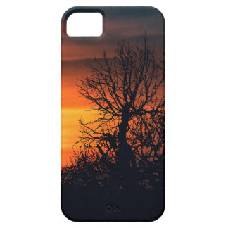 Sunset at Nature Landscape Scene iPhone 5 Cover