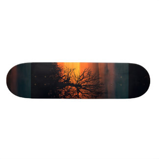 Sunset at Nature Landscape Skate Board