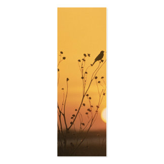 Sunset at Tewaukon National Wildlife Refuge Business Card