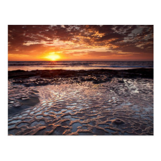 Sunset at the beach, California Postcard