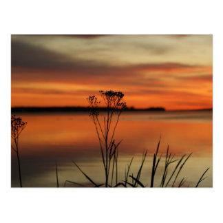 SUNSET BARAGA LAKE in Michigan Postcard