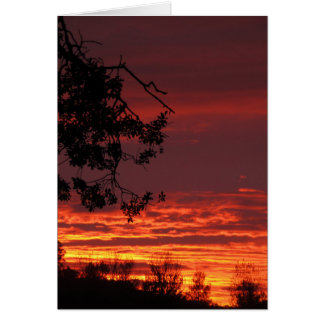 Sunset Blank Note Card