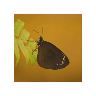 Sunset Butterfly Design Wood Wall Art