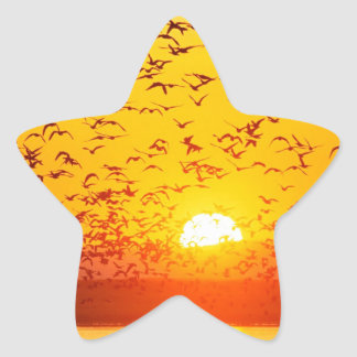 Sunset Canada Tule Lake Refuge California Star Sticker