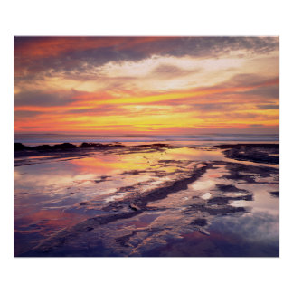 Sunset Cliffs tide pools Poster