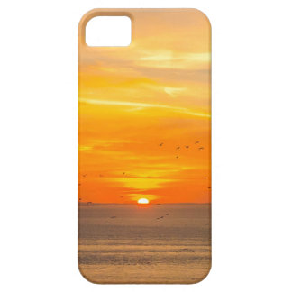 Sunset Coast with Orange Sun and Birds Case For The iPhone 5