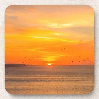 Sunset  Coast with Orange Sun and Birds Drink Coaster