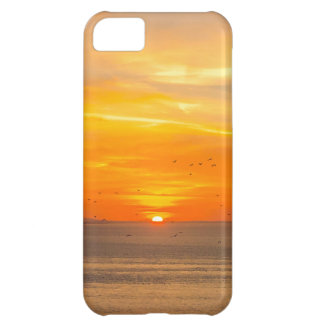 Sunset Coast with Orange Sun and Birds iPhone 5C Cases