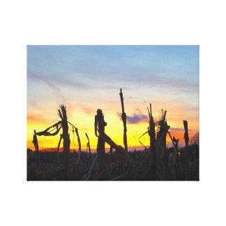 Sunset Corn Field Canvas Print